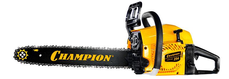 Champion 254 18