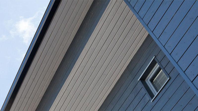 Дом окрашенный акриловой краской
