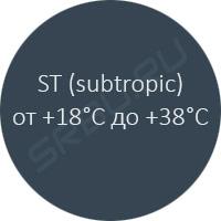 subtropiс