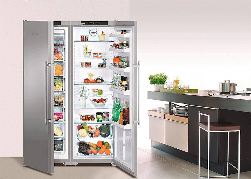 Холодильник с двойными дверями